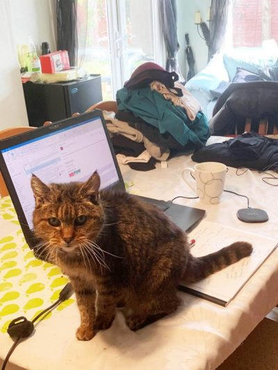 Zoe Jones home office